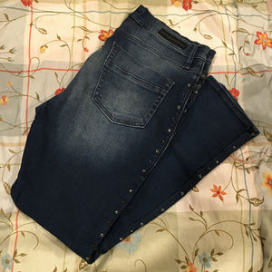 Rock & Republic studded skinny jeans (NWOT, 14)